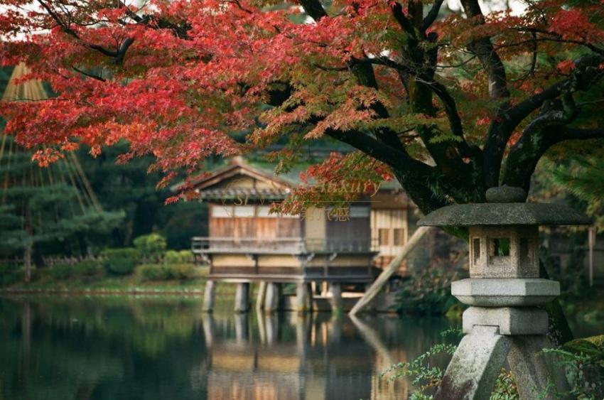 日本文化之旅7天6晚奇迹晚宴自在游(全球仅20个席位,隈研吾先生带您进入漆器艺术天堂)